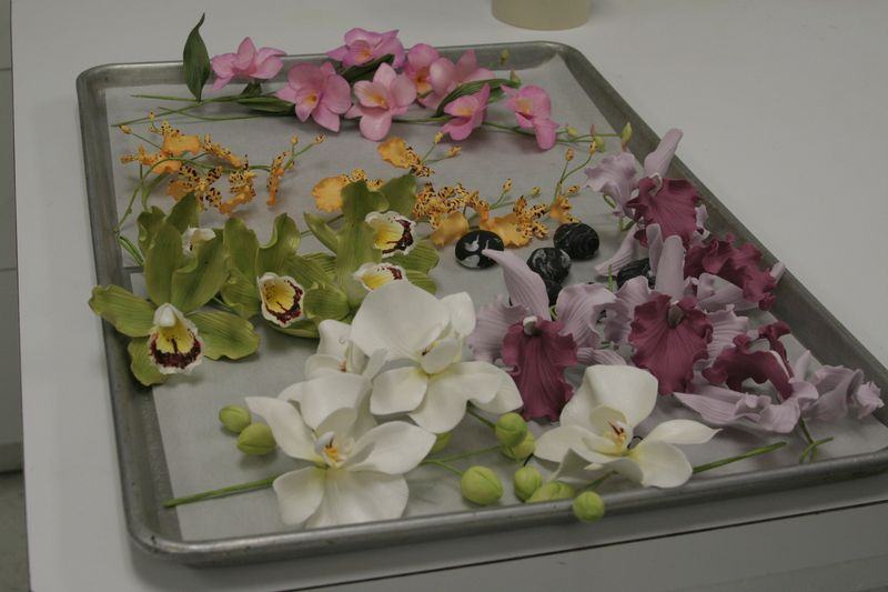 Tray of orchids
